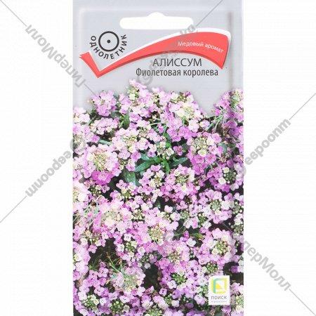 Семена алиссума «Фиолетовая королева» 0.3 г.
