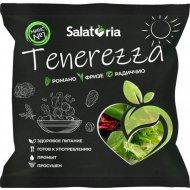 Салатная смесь «Salatoria» Тенереза, микс №1, 150 г