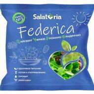 Салатная смесь «Salatoria» Федерика, микс №3, 150 г