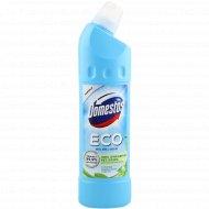 Средство чистящее «Domestos» Eco, 750 мл.