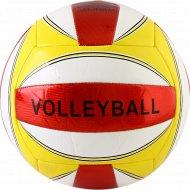 Мяч волейбольный, IV5XC.