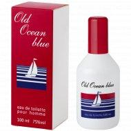 Туалетная вода мужская «Old Ocean blue» 100 мл.