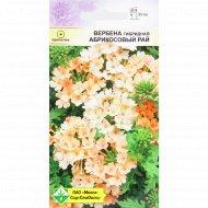 Семена цветов «Абрикосовый рай» вербена гибритная, 0.1 г.
