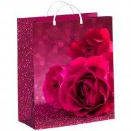 Мешок с пластиковыми ручками «Малиновые розы» 26х24 см