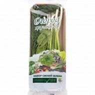 Набор зелени «Укроп+лук+шпинат» 100 г.