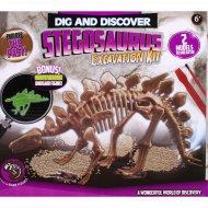 Набор «Раскопки динозавра» stegosaurus 2.