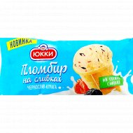 Мороженое пломбир «Юкки» с черносливом и курагой в стаканчике, 70 г.