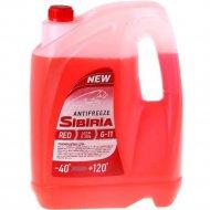 Антифриз «Sibiria» G-11, красный 5 кг/4.3 л