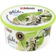 Освежитель воздуха «Glade» весенний жасмин, 70 г