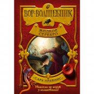 Книга «Вор-волшебник. Жидкое серебро».