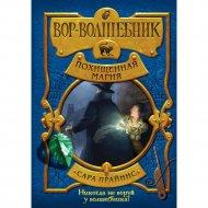 Книга «Вор-волшебник. Похищенная магия».