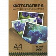 Фотобумага «White Paper» 230 г/м2, формат А4, 25 л.