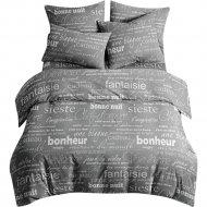Комплект постельного белья «Ночь Нежна» Письма 7420-1, семейный 50х70.