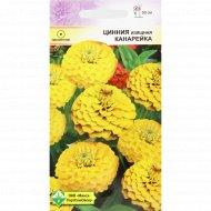 Семена цветов «Циния» изящная, 0.5 г.