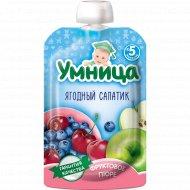 Пюре «Умница» ягодный салатик, 100 г.