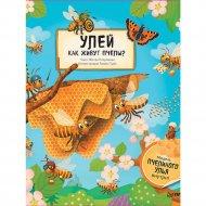 Книга «Улей. Как живут пчёлы?».