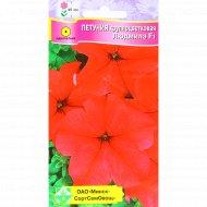 Семена цветов «Петуния гибридная» крупноцветковая, 0.007 г.