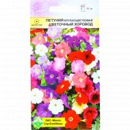 Петуния «Цветочный хоровод» гибридная крупноцветковая, 0.1 г.