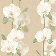 Обои «Fox» Орхидеи, 2193