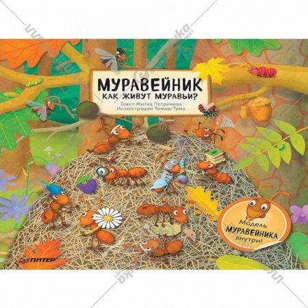 Книга «Муравейник. Как живут муравьи?».