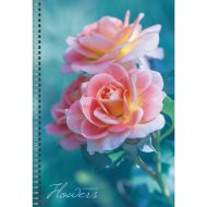 Тетрадь «Нежная роза» А4 80 листов.