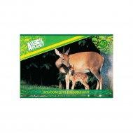 Альбом для рисования «Animal Planet» AP-AA-40, Олени.