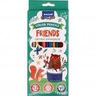 Карандаши цветные «Friends» 12 цветов.