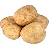 Картофель 1 кг, фасовка 2-2.6 кг