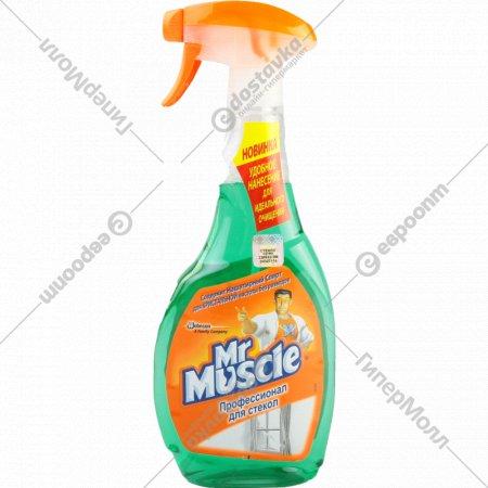 Средство для мытья стекол «Mr Muscle» 500 мл
