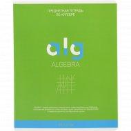 Тетрадь «Алгебра» 48 листов.
