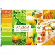Альбом для рисования «Зеленое и оранжевое».