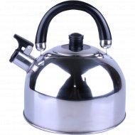 Чайник из нержавеющей стали 2,5 л.
