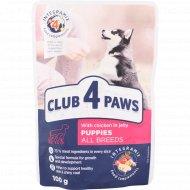 Корм для щенков «Club 4 paws» с курицей в желе, 100 г
