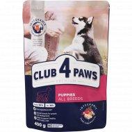 Корм сухой «Club 4 Paws» Premium, для щенков всех пород, 300 г