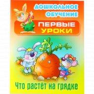 Книга «Что растет на грядке» (А5+), Кузьмин С.