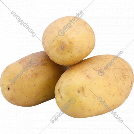 Картофель мытый, 1 кг., фасовка 2.1-2.5 кг