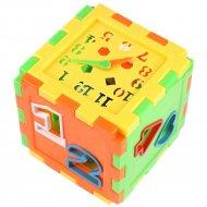 Кубик-сортер «Darvish» 12х12 см.