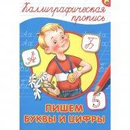 Книга «Пишем буквы и цифры» каллиграфические прописи.