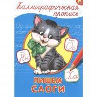 Книга «Пишем слоги» каллиграфические прописи.