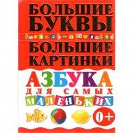 Книга «Азбука для самых маленьких» Е.С. Чайка.
