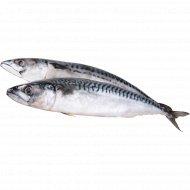 Рыба мороженая «Скумбрия» атлантическая, 1 кг., фасовка 0.9-1.4 кг