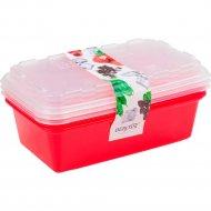 Набор контейнеров для заморозки «Berossi» ИК75837000.
