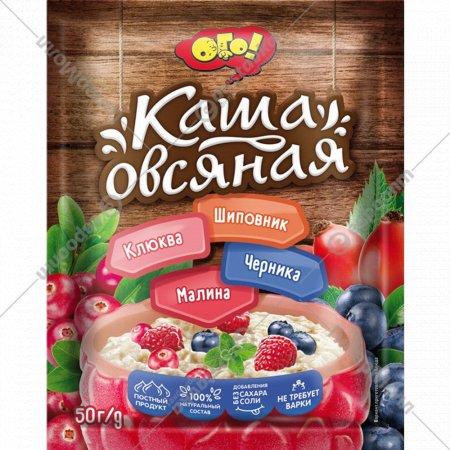Каша овсяная «Ого!» с малиной, черникой, клюквой и шиповником, 50 г.