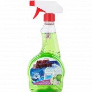 Средство для мытья стекол ««Mister window»» зелёное яблоко, 500 мл