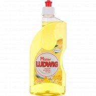Средство для мытья посуды «Mister Ludwig» лимон, 500 г