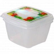 Комплект контейнеров «Fresco» для холодильника и микроволновой печи, 2 шт. x1 л.