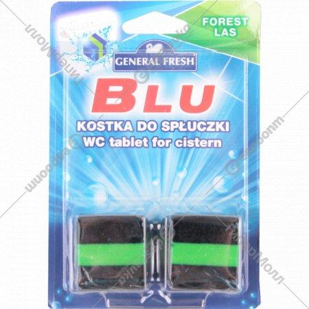Освежитель для смывного бачка «General Fresh» лес, 2х50 г.