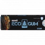 Жевательная резинка «Eco Gum Steam» 5 г