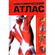 Книга «Анатомический атлас. Основы строения и физиологии человека» Бориса А. И.