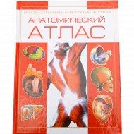 Анотамический Атлас. Основы строения и физиологии человека.
